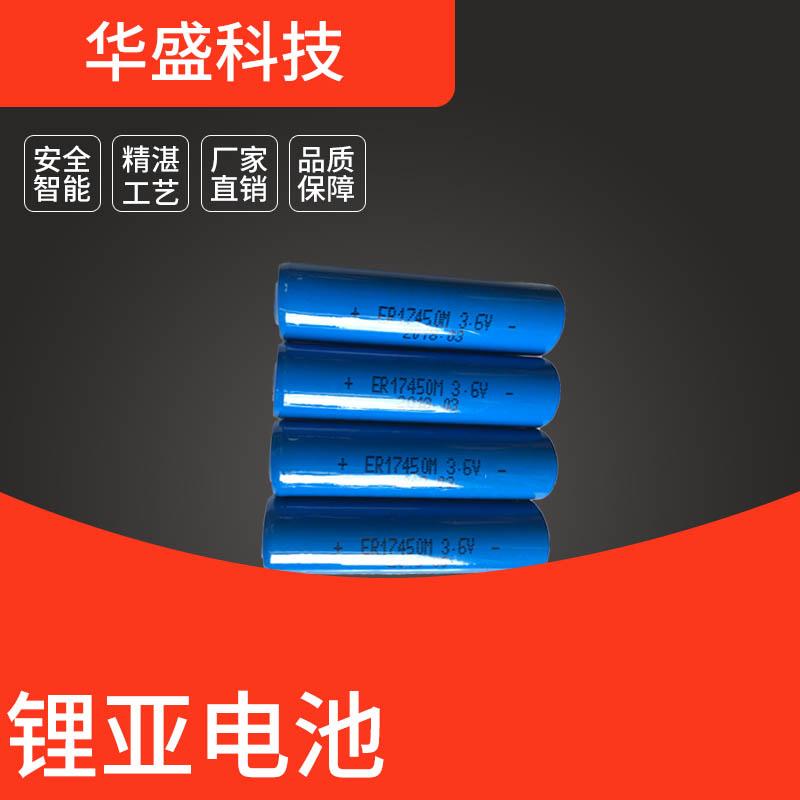 东莞华盛 ER17450M锂亚电池  可按需求定制尺寸容量 厂家直销