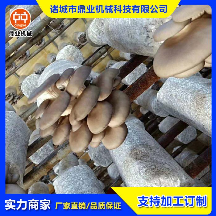 食用菌灭菌器  杏鲍菇灭菌器  木耳灭菌设备 鼎业