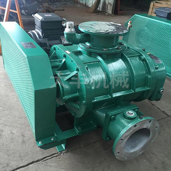 黑龙江罗茨真空泵 多级干式罗茨真空泵 大丰机械