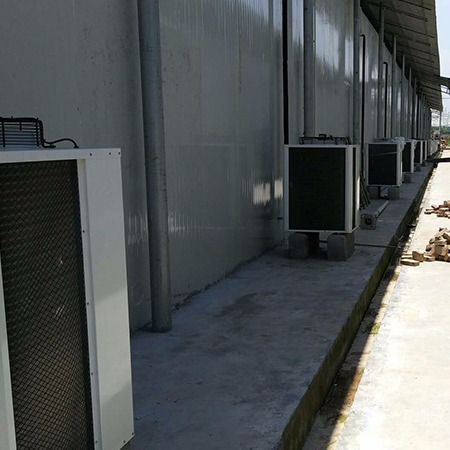 四川专业冷库冻库安装   成都百年冷冻经验丰富 农副产品冷库