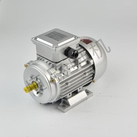 宁波恒欣电机厂三相异步电动机YS系列HX-038