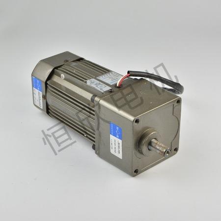 宁波恒欣电机厂特殊专用电机HX-065