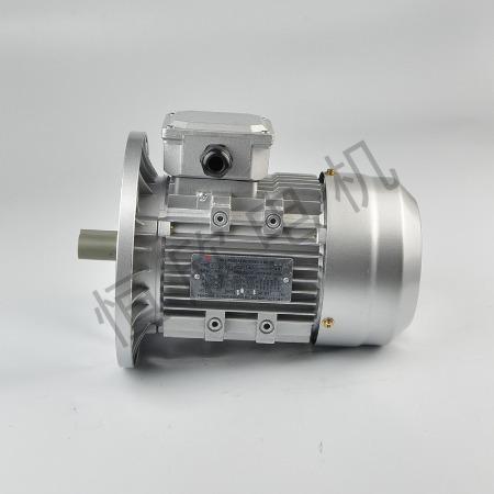宁波恒欣电机厂三相异步电动机YE2系列HX-019