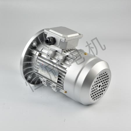 宁波恒欣电机厂三相异步电动机YS系列HX-042
