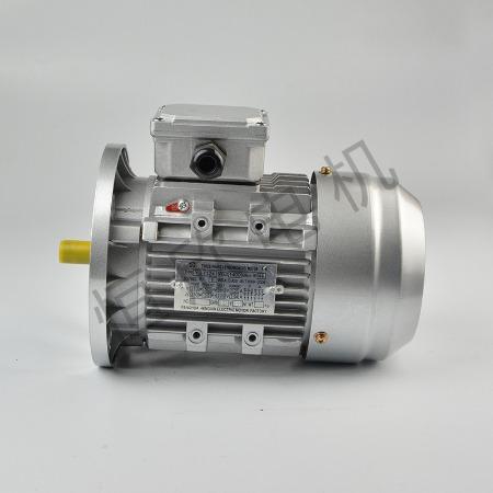 宁波恒欣电机厂三相异步电动机YE2系列HX-017