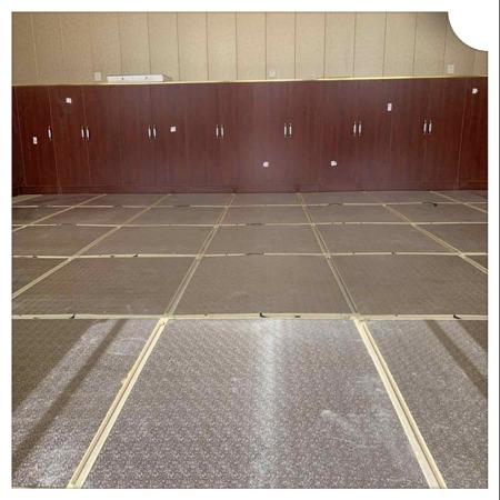 室内专用发热地板 碳纤维电采暖 生产厂家专业定制