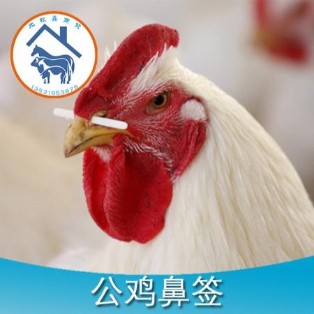 公鸡鼻签公鸡阻食棒塑料鼻签