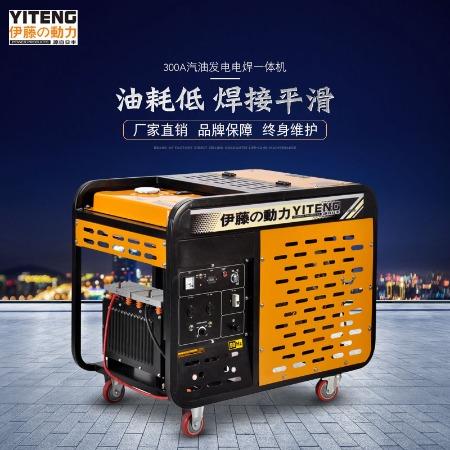 便携式柴油发电焊机YT300A