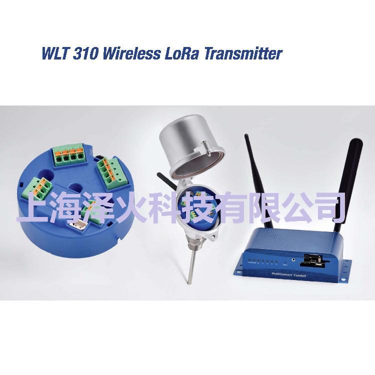 德国进口 WLT310 LoRa无线测温传感器