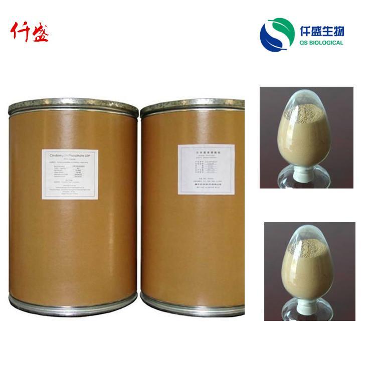 河北仟盛生产厂家  蛋清粉食品级  优质蛋清粉