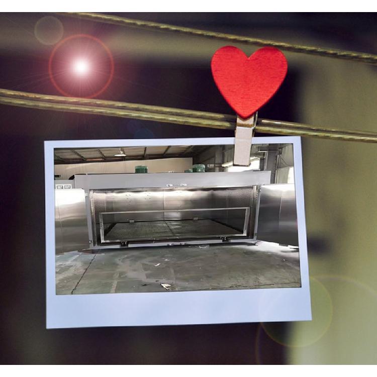 苏州台硕电热专业生产加工_平板台车烘箱_可按照尺寸定制_电热鼓风烘箱生产厂家