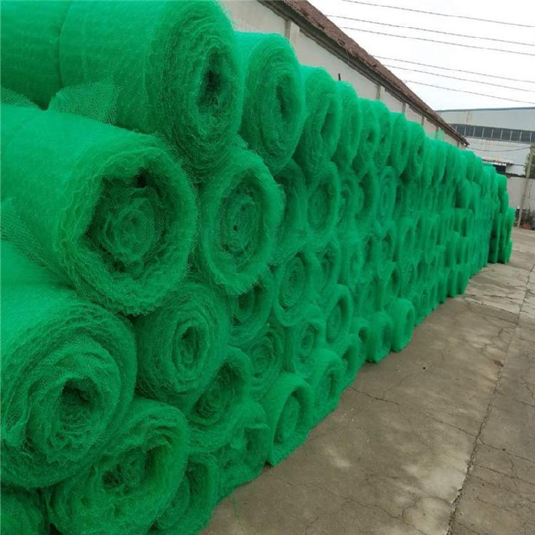 护坡/耐老化三维植被山东泰安厂家销售绿色环保三维植被网_边坡防护排水植草专用