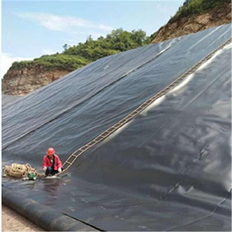 泥鳅水产养殖淡水养殖场LLDPE土工膜厂家直销全新料养护加厚