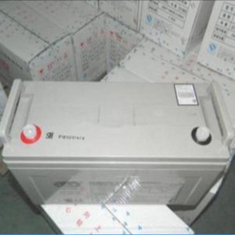 YUASA汤浅蓄电池NP100-12铅酸免维护蓄电池12V100AH直流屏ups机房