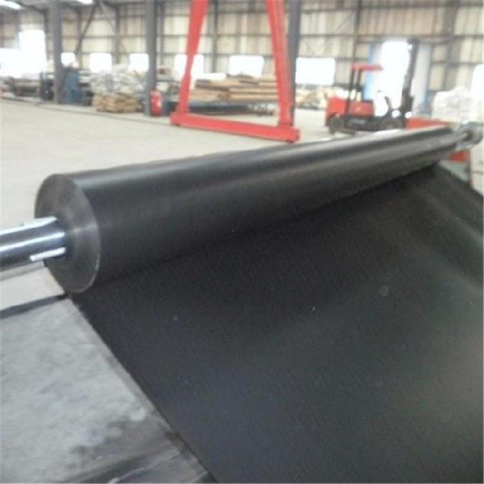 耐腐蚀耐低温抗冻功用好黑丝土工膜价低又快质量保证