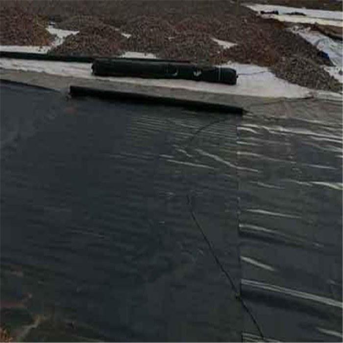 抗霜抗低温垂钓场专用土工膜1.5mm城建HDPE糙面土工膜厂家报价合理公道质量保障