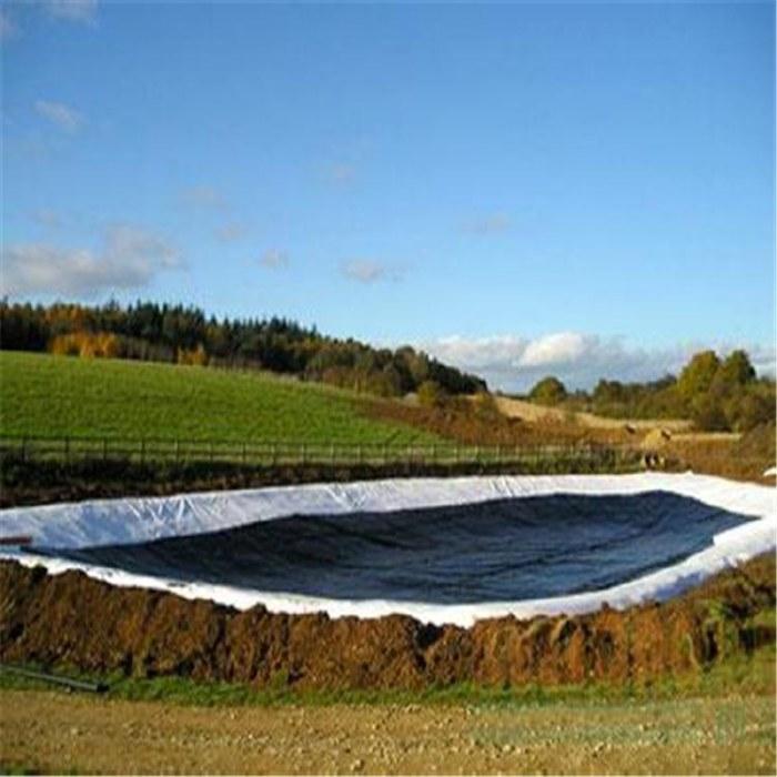 抗霜抗低温垂钓场专用土工膜HDPE土工膜厂家直发