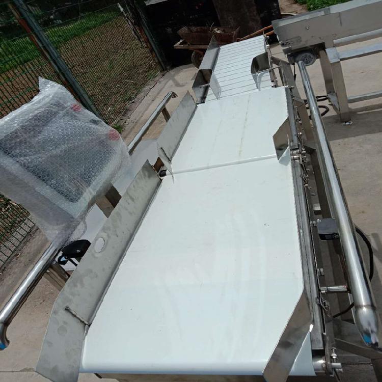 中鸿定制 白条鸡分拣机 速冻鱼产品选别秤 黄花鱼重量分级机