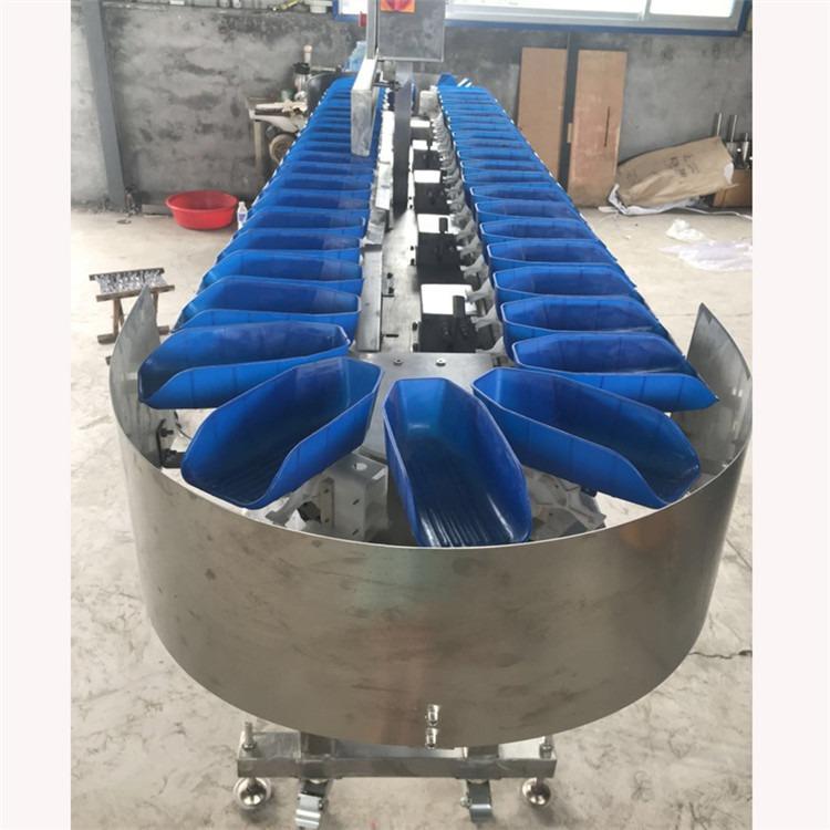 厂家直销 大枣自动上料重量分级机 食品生产线重量分拣机