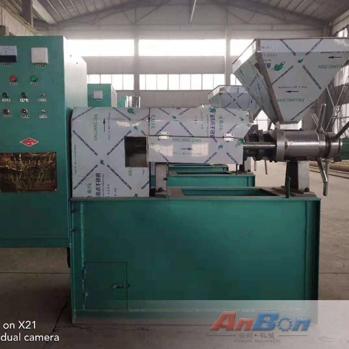 核桃仁榨油机 不锈钢全自动榨油机 花生商用榨油机设备