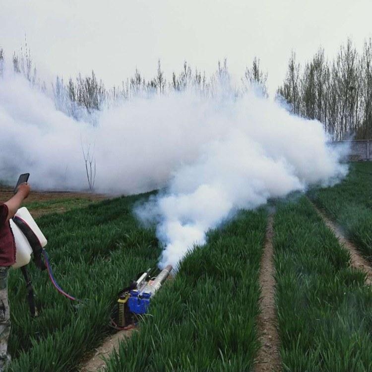 富强  果园专用弥雾机 背负式果园蔬菜打药机