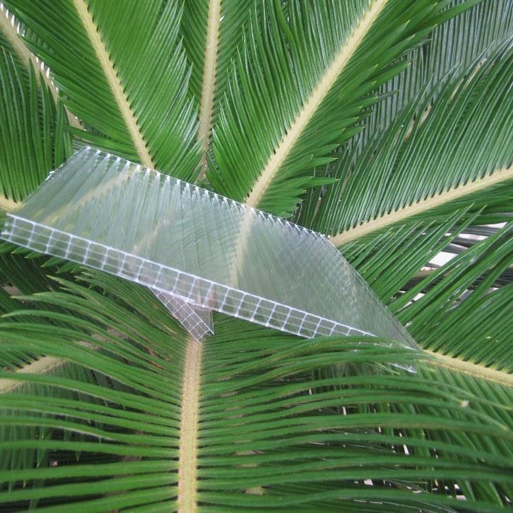 热销供应  阳光板厂家价格   质量保证