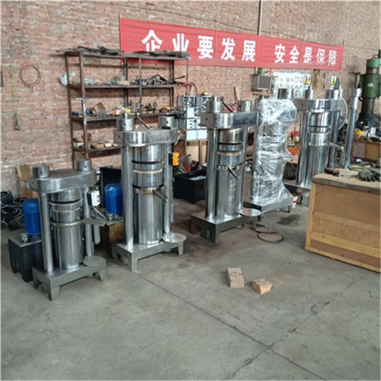自动化榨油机 多功能冷热两用榨油机