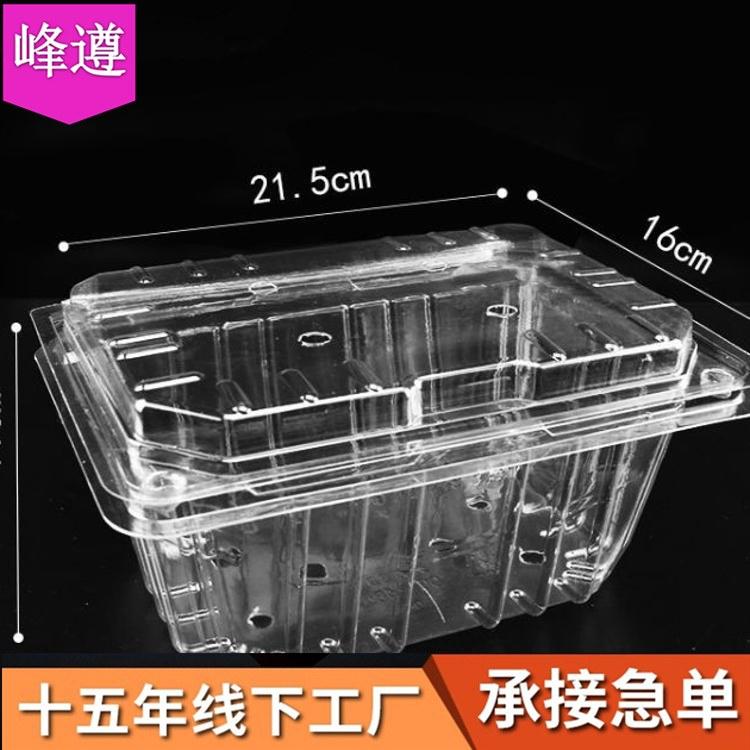 一次性水果盒pet透明塑料盒500g装现货草莓西瓜水果包装盒批