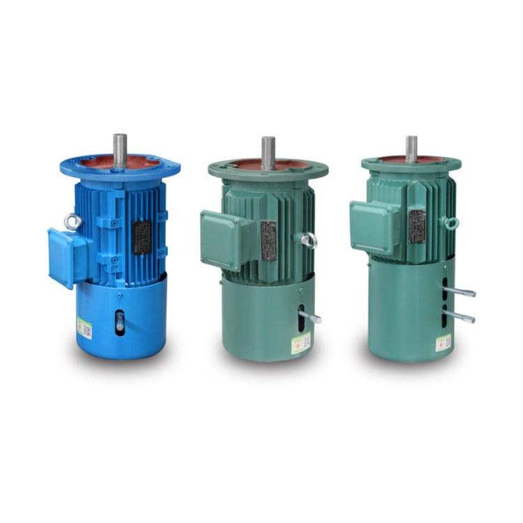 江苏高科 电磁制动电机 刹车电机 YEJ2-100L1-8 0.75kw 电磁制动三相异步电动机