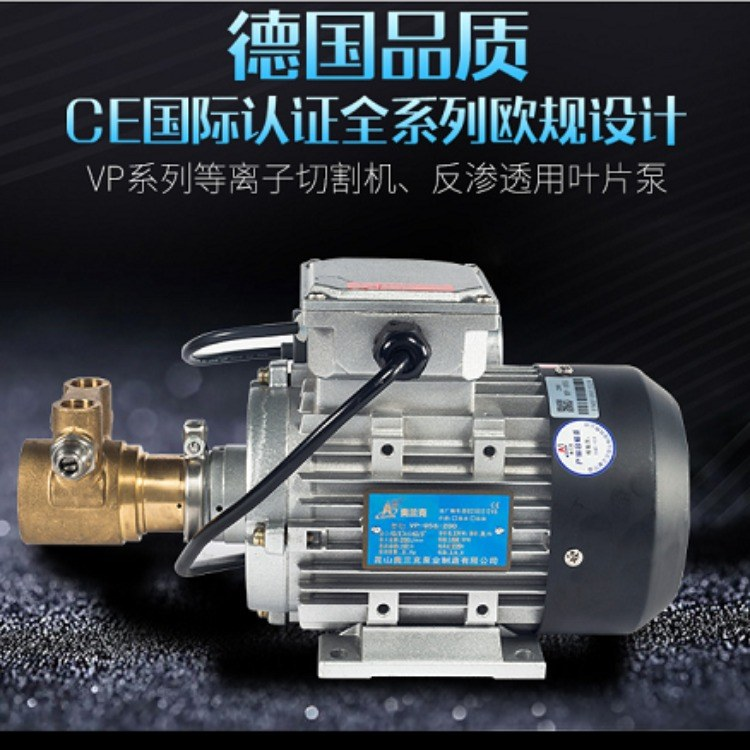 VP系列高压叶片泵 啤酒冷却系统泵 激光冷却循环泵 咖啡机循环泵  景观雾化系统