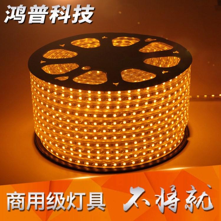 LED灯带白光 5050/60户外防水轮廓绕树线形客厅吊顶暗槽造型软灯带