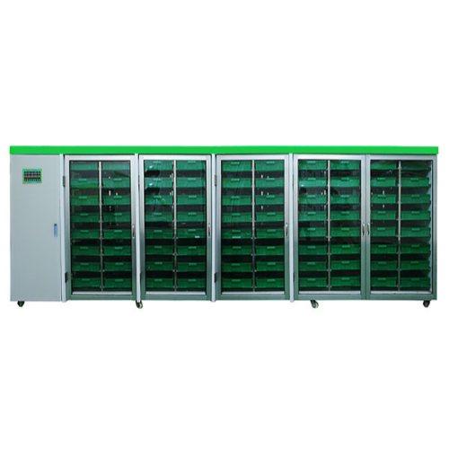 空心菜芽苗菜机市场 供应空心菜芽苗菜机生产 豆芽王机械