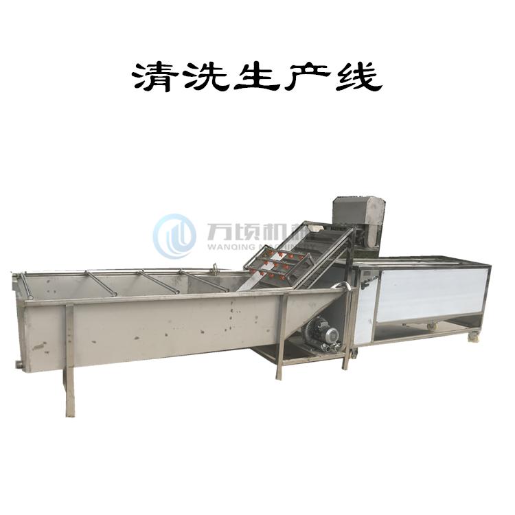 红枣清洗生产线 厂家接受定制