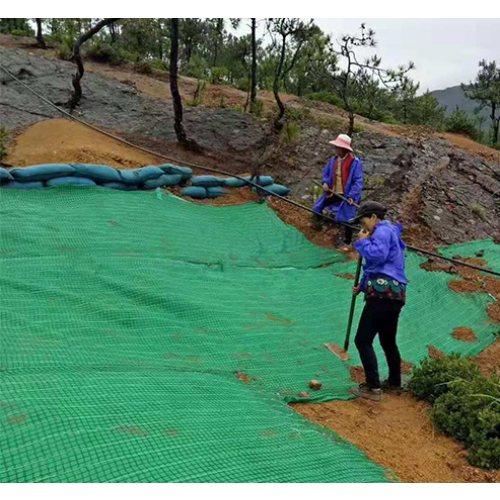 生态麻椰毯施工 高速公路麻椰毯图片 大广新材料