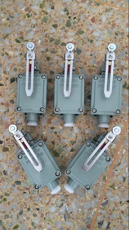 防爆行程开关LX5-K可调滚轮转臂型防爆限位开关