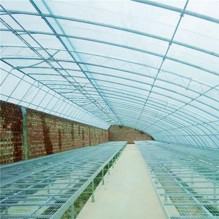 金纳 新型式钢结构大棚温室组装造价 连体连栋大棚温室搭造建设