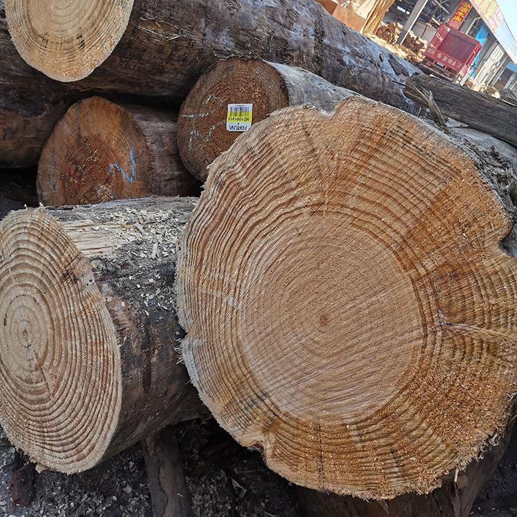 各规格樟子松批专 樟子松厂 现货樟子松直销 俄罗斯 新西兰辐射松