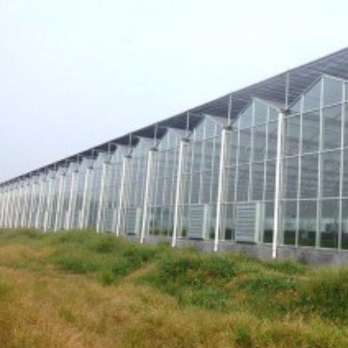 蔬菜温室大棚 汉威温室 青州温室大棚骨架 青州温室大棚承建