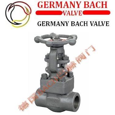 进口锻钢焊接截止阀 美国不锈钢锻钢焊接截止阀:德国BACH巴赫
