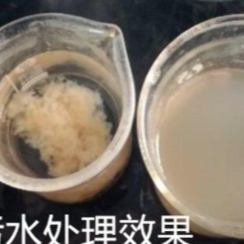 固体聚丙烯酰胺净水剂 东方 污泥脱水聚丙烯酰胺用途