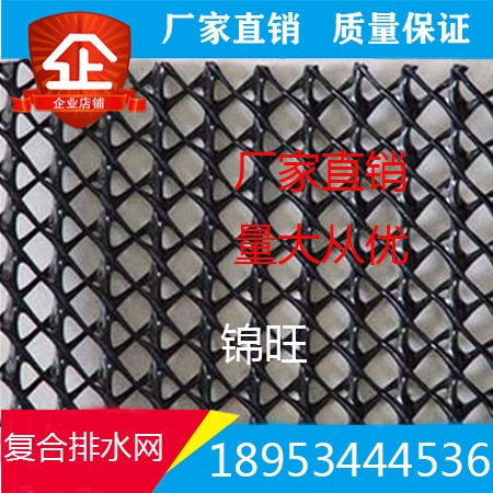 三维复合排水网 三维土工网 6mm复合排水网 三维复合土工网施工方便