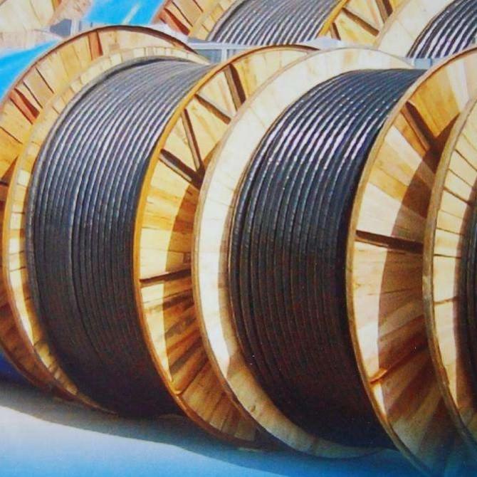 杭州电线电缆回收 价格涨幅 24小时上门回收