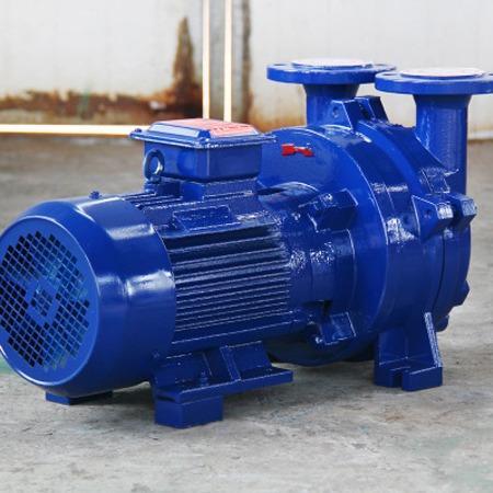 力王机械 水环真空泵 2BV水环真空泵 型号齐全 可来电咨询