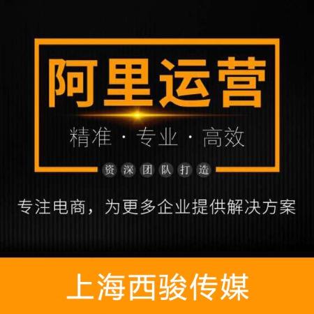 诚信通托管_店铺设计_阿里巴巴代运营公司_包年服务-西骏传媒