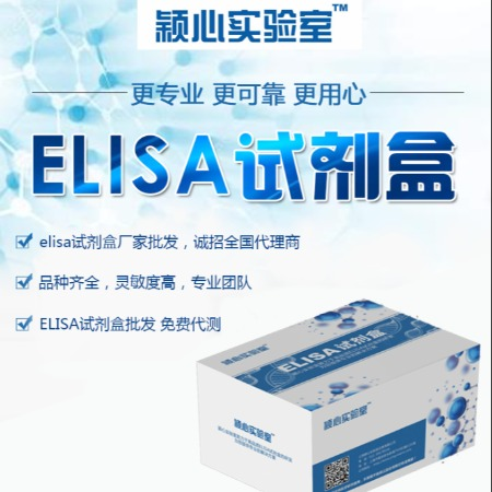 小鼠活性氧(ROS)Elisa試劑盒 活性氧kit