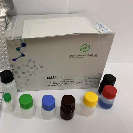 人结合珠蛋白/触珠蛋白(Hpt/HP)酶联免疫吸附测定试剂盒