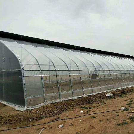 连栋智能温室大棚-质量可靠-薄膜温室大棚-维修更新-满天星农业科技