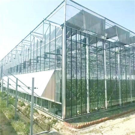 连栋玻璃温室大棚定_安装建设_花卉展览温室大棚工程_满天星农业科技