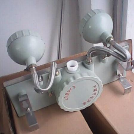 防爆应急照明两用灯 CBB-20JB防爆双头应急灯