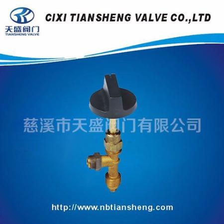 优质供应煤气液化气减压阀调压器TS-V03阀门